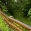 日本100名城めぐり 長野県「高遠城」(44城目登城)