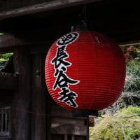 鎌倉 長谷寺周辺のんびり散策