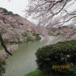 東京「桜」の名所、三万歩