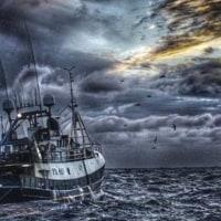 英国のEU離脱 スコットランド漁業の機会と課題  「EUが漁業をダメにした」英の国民食が訴えるEU離脱