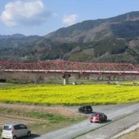 五郎の菜の花畑