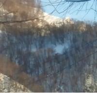 2358号Снег(雪)