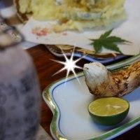 猫探偵団、松茸を食らう☆