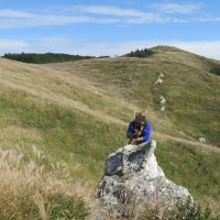 ススキの生石高原