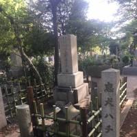 青山霊園をランニング 平成29年5月