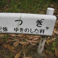 福井県・「若狭三方五湖縄文博物館」を見学しました。