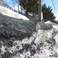 これが 「黒い雪」の正体です !