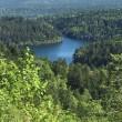 三度、北海道旅行⑥ 阿寒湖~釧路~苫小牧~帰宅