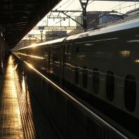 静岡駅に到着するN700系新幹線 ほかイロイロ (2017年1月2日)