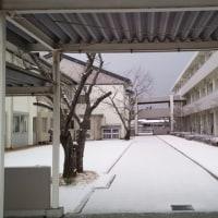 雪の朝のお迎え