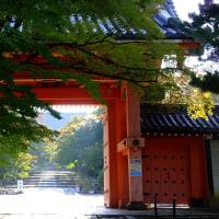 紅葉チェック、真如堂→法然院→永観堂→南禅寺