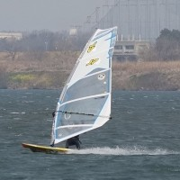 風!風!風!・・・・毎日強風!