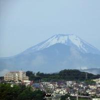 6月22日(水)雨上りの富士山を見ながら、朝の散策
