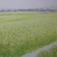 絵「菜の花畑」(完)