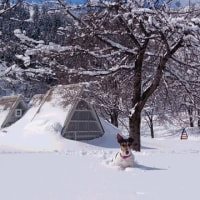 昨日から、栄村に来ています