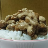 納豆と休日