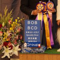 JCC東日本展