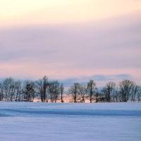 救われる、思いがけずのピンク色の大雪山と夕暮れ