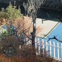 小春日和。昨日(3日)。子供が描く絵のように、水色の川面。浅野川。