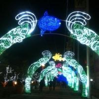海遊館 1