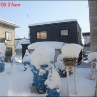 今シーズン根雪日