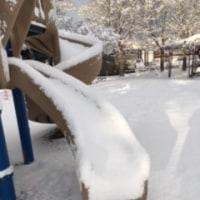 雪が降りました(よしだ麺)