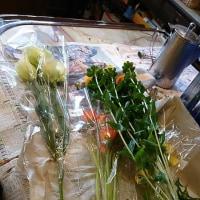 三木市緑が丘  珈琲館 サンさん。お花を生ける女性❤️