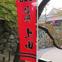 #4828 上田城①('15 信州秋)