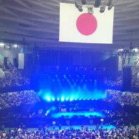おじゃまなさくら(ポール武道館公演その3)