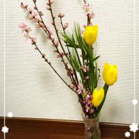 桃の花が咲いた。
