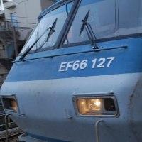 直流電気機関車 EF66-127【武蔵野線:西国分寺駅】 2016.11.20 (7)撮り鉄 車両鉄