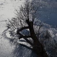 東古屋湖・冬景