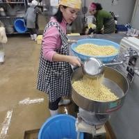 作開地区のお豆腐づくり