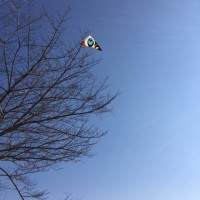 風見鶏と凧と梅の花