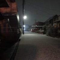 やば~い・・・雪がみるみる積もり中(~~;