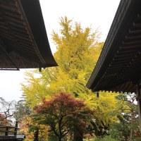 秋 津金寺 9