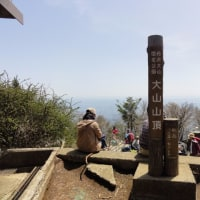 2017年5月2日(火)神奈川県 大山 JA/KN-006