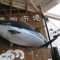 日本最古の温泉<白浜温泉>に南紀を旅して