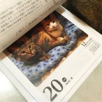 2017日めくりカレンダー掲載