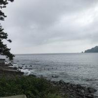 26日(月) 今朝の西伊豆安良里&黄金崎のダイビング情報!