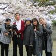 花岡山で花見