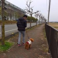 3月26日 ユズと散歩練習