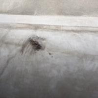 Papa Roach - Falling Apart