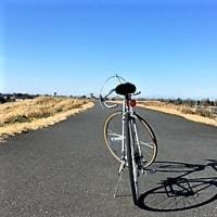 自転車のポートレイト