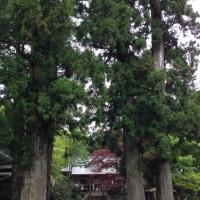 山頂にひっそりと佇む神社仏閣 心引き締まり別世界に見えた