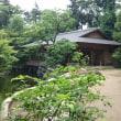 寒川神社神嶽山神苑に行きました🙇