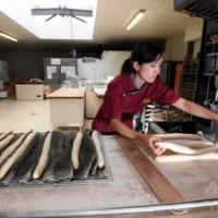 仏バゲットコンクールで日本人女性が優勝  /  AFPBBNews