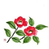 今も 記憶に残る 深い赤の花・・・