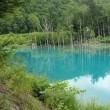 北海道、青い池