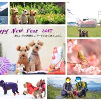 新年のご挨拶・・・